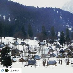 #Repost @vaisakhi with @repostapp  Follow back for travel inspiration and tag your post with #talestreet to get featured.  Join our community of travelers and share your travel experiences with fellow travelers atHttp://talestreet.com White wash!  Nope not the Blizzard effect in US but the natural snow effect in Sonmarg  #Snow #Snowy #sonmarg #Kashmir #Winter #nature #india #travel #wanderlustwednesday #wanderlust #vagabond #indiaclicks #indiapictures #_soi #iwanderwhy #igres  #mountains…
