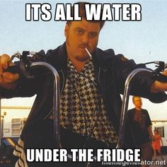 ITS ALL WATER UNDER THE FRIDGE - ricky trailer park boys | Meme ...