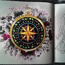 b901e6eccb9e70e8378da051a23624bb--johanna-basford-compass.jpg (220×220)