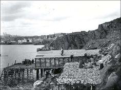Newfoundland Heritage Web Site
