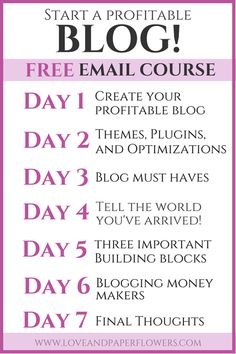 blogging profits simplified learn how to setup and develop a profitable blog