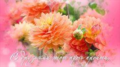 Цветы, музыка и пожелания друзьям!