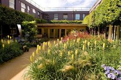 """pic.twitter.com/taTw5l6o from @SimonSimply What a beautiful garden at Frimley Park Hospital """"The Time Garden"""" for those at the end of life."""