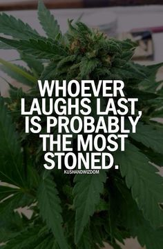 Laughter is the second best medicine that is provided by americas biggest decrimialized medicine, which proves America thinks about one thing only... $$$$$$$$ and themselves, what happened to the kindness towards others???