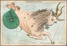 "Capricornus // vintage Constellation cards // from the ""Urania's Mirror"" boxed set, circa 1825."