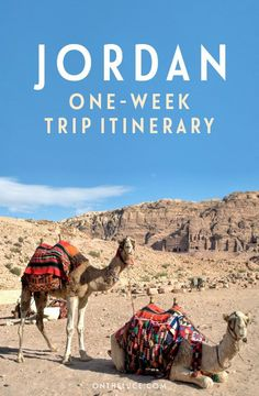 Travel future: My Jordan itinerary – On the Luce travel blog