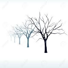 Image result for silhouette trees fog
