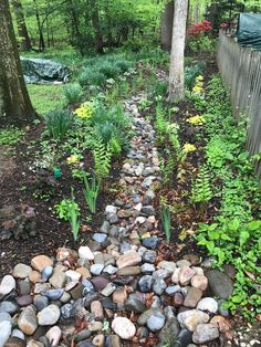 Replace that soggy section of lawn with a rain garden Home Landscaping, Landscaping With Rocks, Front Yard Landscaping, River Rock Landscaping, Rain Garden Design, Garden Landscape Design, Backyard Drainage, Landscape Drainage, Pebble Garden