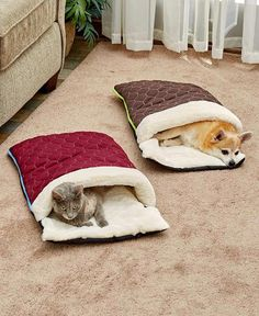 Quilted Snuggle Sack Pet Beds- Quilted Snuggle Sack Pet Beds Give your furry friend a taste of the high life with this Quilted Snuggle Sack Pet Bed. It keeps your dog or cat warm and cozy on all sides. Works best with sma - Diy Dog Bed, Pet Beds Diy, Pet Beds For Dogs, Cat Beds, Pet Furniture, Furniture Layout, Furniture Online, Furniture Companies, Furniture Ideas