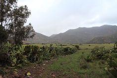 """Almería, Níjar, Cabo de Gata, El Valle Escondido, Parque Natural 36° 45' 7.79"""" N 2° 8' 48.05"""" W Cortesía de José Ángel De La Peca"""