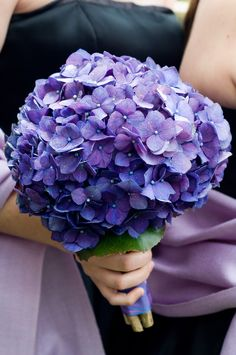 Bridesmaid bouquet - simple and inexpensive. Bride's bouquet could incorporate white hydrangeas.