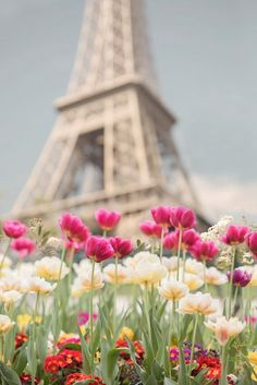 Paris Photography - Tulips at the Eiffel Tower, Paris in Spring, French Home Decor, Large Wall Art Torre Eiffel Paris, Paris Eiffel Tower, Beautiful World, Beautiful Places, Image Paris, Paris In Spring, I Love Paris, Paris Paris, French Home Decor