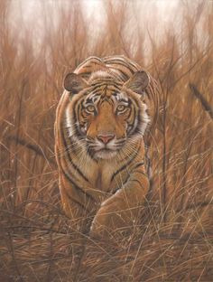 Tiger Painting by Eric Wilson