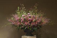 daniel ost flowers - Google Search