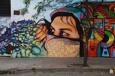 street art, cities, brazil, argentina, artist, new york, buenos aires, graffiti