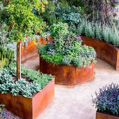 Potager Garden DIY Lawn Edging Ideas For Beautiful Landscaping: Bronze Raised Garden Edges with Patina Effect - Looking for a solution decorating your yard? Take a look at these 68 lawn edging ideas that I promise that they will transform your garden. Raised Bed Garden Design, Building A Raised Garden, Metal Raised Garden Beds, Raised Bed Gardens, Metal Garden Edging, Metal Beds, Raised Vegetable Gardens, Vegetable Garden Design, Vegetable Gardening