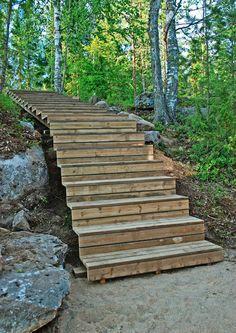 kuva Taste Of Nature, Garden Cottage, Stairways, Garden Bridge, Stepping Stones, Backyard, Exterior, Outdoor Structures, Island