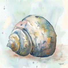 Watercolor Shells IV Canvas Art - Tre Sorelle Studios x Watercolor Painting Techniques, Watercolor Projects, Watercolour Painting, Watercolors, Sea Life Art, Watercolor Ocean, Seashell Painting, Painted Shells, Shell Art