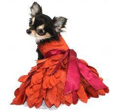 Formal-Wedding - Dog Dresses, Pet Apparel, Designer Dresses