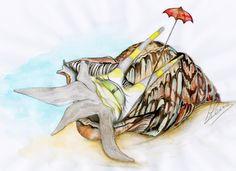 Shell-ter   Tritonis Umbrellata
