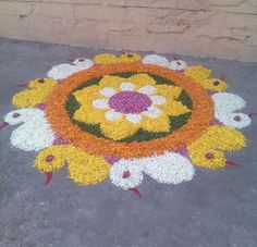 Here are some very beautiful flower rangoli designs for Diwali, Onam, Pongal, and Durga puja. Flower rangoli are easy to make and very gorgeous to look at. Rangoli Designs Flower, Rangoli Ideas, Rangoli Designs Diwali, Kolam Rangoli, Flower Rangoli, Beautiful Rangoli Designs, Flower Designs, Indian Rangoli, Diwali Decorations At Home