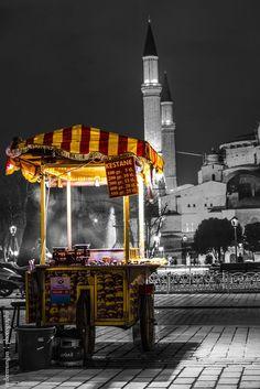 Hagia Sophia and Chestnut - Istanbul - Turkey Countries To Visit, Places To Visit, Places Around The World, Around The Worlds, Grand Bazar, Istanbul Travel, Hagia Sophia, Color Splash, Night Life