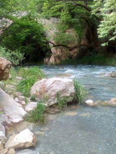 Lousios river , Arcadia , Greece .