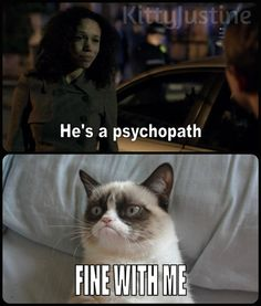 I'm with grumpy cat, fine by me. Life would be so fun living with Sherlock!