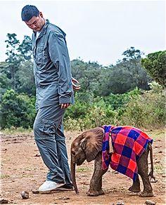 Yao Ming and an orphaned elephant at the David Sheldrick Wildlife Trust