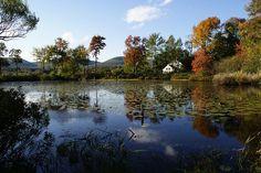 Onota Lake, Pittsfield Mass.