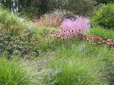 Английские сады. Glen Chantry Garden. Обсуждение на LiveInternet - Российский Сервис Онлайн-Дневников