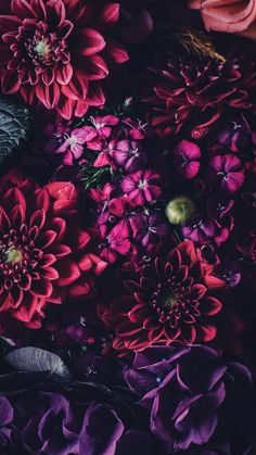 21 pretty wallpapers for your new iphone xs max - floral wallpaper ip Floral Wallpaper Iphone, Aesthetic Iphone Wallpaper, Flower Wallpaper, Nature Wallpaper, Mobile Wallpaper, Aesthetic Wallpapers, Floral Wallpapers, Red Wallpaper, Beautiful Wallpaper