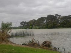 Long Island Reserve, Murray Bridge