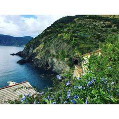 【palace_of_dawn】さんのInstagramをピンしています。 《ずっと眺めていたい✨✨✨ #リグーリア海 #チンクエテッレ #イタリア #italia #italien #italy #cinqueterre #5terre #sea #see #urlaub #vacation #vacance #休暇 #海 #コバルトブルー》