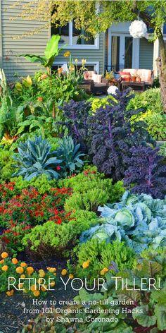 Create a No-Till Garden and Retire Your Tiller Forever Improve Soil with a No-Till Garden Backyard Vegetable Gardens, Vegetable Garden Design, Gardening Vegetables, Garden Guide, Garden Tools, No Till Garden, Dig Gardens, Garden Design Plans, Soil Improvement