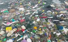 <p>If we don't cut our plastic problem, this might be the only way to fish to live.</p>
