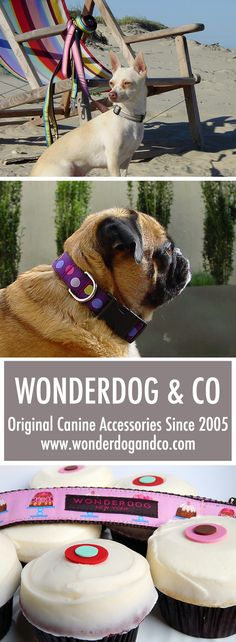Since 2005, WONDERDOG & CO. has been producing original canine accessories. Voted Best Doggie Designer 2010 by Doggie Aficionado Magazine. Visit us online to browse our entire collection. www.wonderdogandco.com