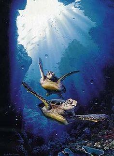 Turtle Heaven - By: Artist Christian Riese Lassen Sea Turtle Art, Turtle Love, Sea Turtles, Underwater Art, Underwater Photography, Ocean Art, Ocean Life, Sea Turtle Pictures, Delphine