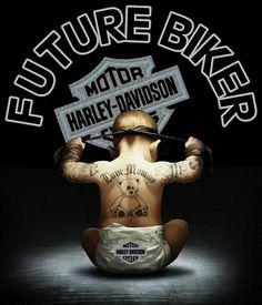 Mind Blowing Unique Ideas: Vrod Harley Davidson V Rod harley davidson motorcycles new. Harley Davidson Fatboy, Harley Davidson Kunst, Harley Davidson Gifts, Harley Davidson Wallpaper, Harley Davidson News, Harley Davidson Motorcycles, Vintage Motorcycles, Hd Motorcycles, Davidson Bike