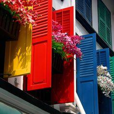 beautiful bright shutters