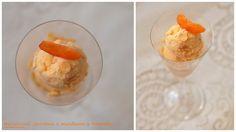 Meruňková zmrzlina s mandlemi a Amaretto