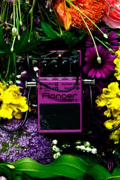 Distortion & Flowers. combination of flower arranging & guitar effects pedals