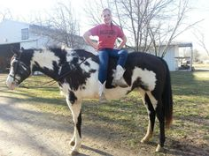 Photo session with my horse