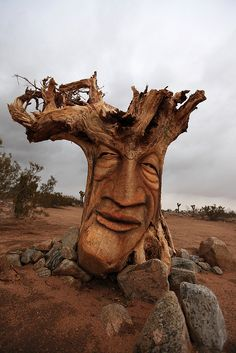 A face carved from the wood of an upended tree root ball on the side of Yucca Mesa Road north of Yucca Valley, California.