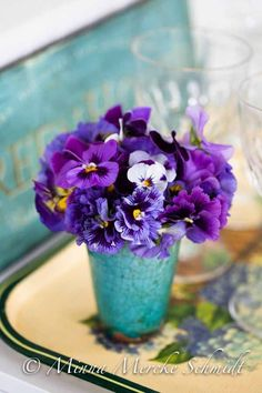 ~ pansies in vase ~