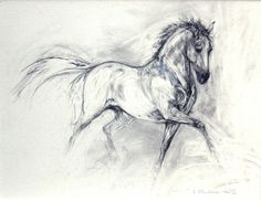Stunning abstract horse. I like this drawing as it shows the posh look of a horse in dressarge positions.