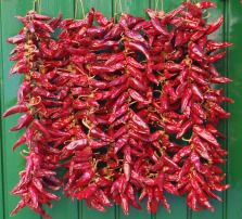 Drying Peppers,How to dry peppers