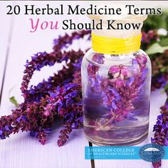 20 Herbal Medicine Terms You Should Know