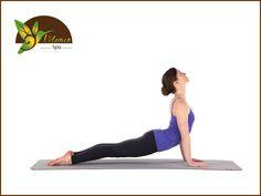 EL MEJOR SPA. Los beneficios del yoga se manifiestan de manera física, mental y emocional. Perder peso y tener un cuerpo fuerte y flexible, son algunas de los beneficios que distinguen a quienes practican esta disciplina. Unos minutos de yoga más otros de meditación, pueden producir alivio en el cuerpo físico como consecuencia de una mala postura o estrés excesivo. En Velamen SPA tenemos los mejores tratamientos corporales para ayudarte a liberar el estrés. Llámanos al teléfono 5562-6264 o a…
