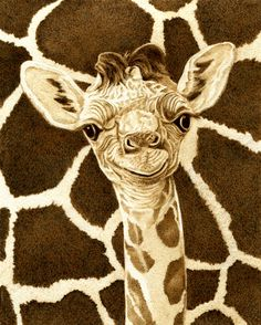 """Baby Giraffe"" by Cate McCauley"